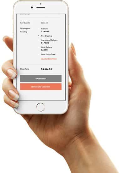 Woocommerce støtter de fleste nettbaserte sikre betalings løsningene.